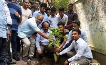Tree plantation of BCL at JnU